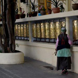 anziana mentre sta facendo la khora a dharamsala