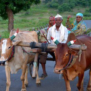 contadini sul carro in india centrale templi rupestri