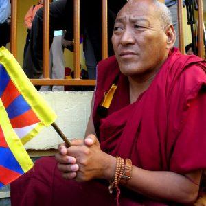 monaco tibetano a mc leod in india del nord