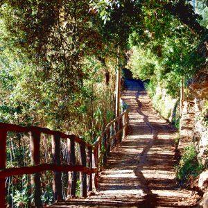 un sentiero sul monte di portofino in liguria