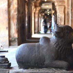 statua di nandi nel brihadeeswara temple a thanjavur in tamil nadu