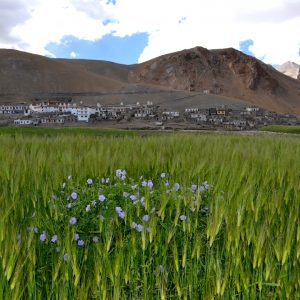 il classico paesaggio ladakho