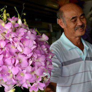 venditore di orchidee in thailandia
