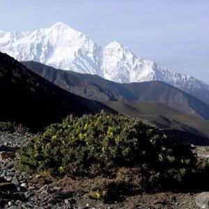paesaggio tra jomosom e tukche in annapurna