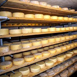 come si stagionano i formaggi